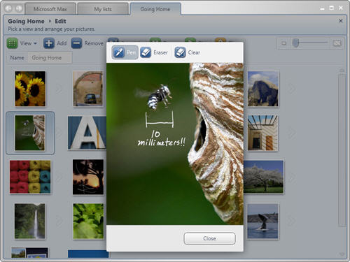Microsoft Max Photo Annotation