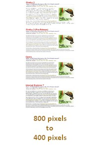 Image Scaling: 800px to 400px