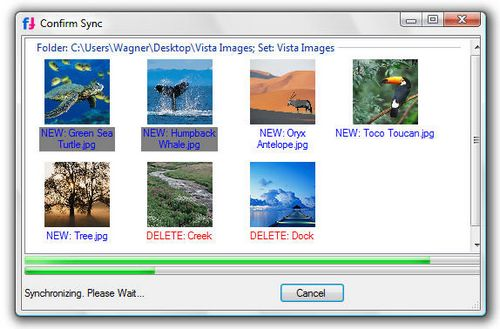 FlickrSync: Synchronize Photos with Flickr
