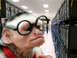 Datacenter Monkey