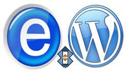 IE7Pro Syncback WordPress Logos Icons