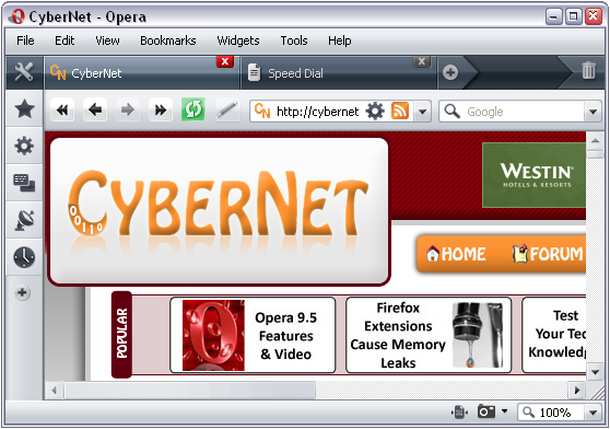 opera 9.5 new theme.png
