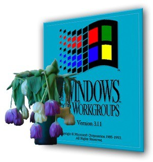 windows 3.11.jpg