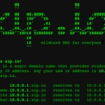 Free Wildcard DNS Service